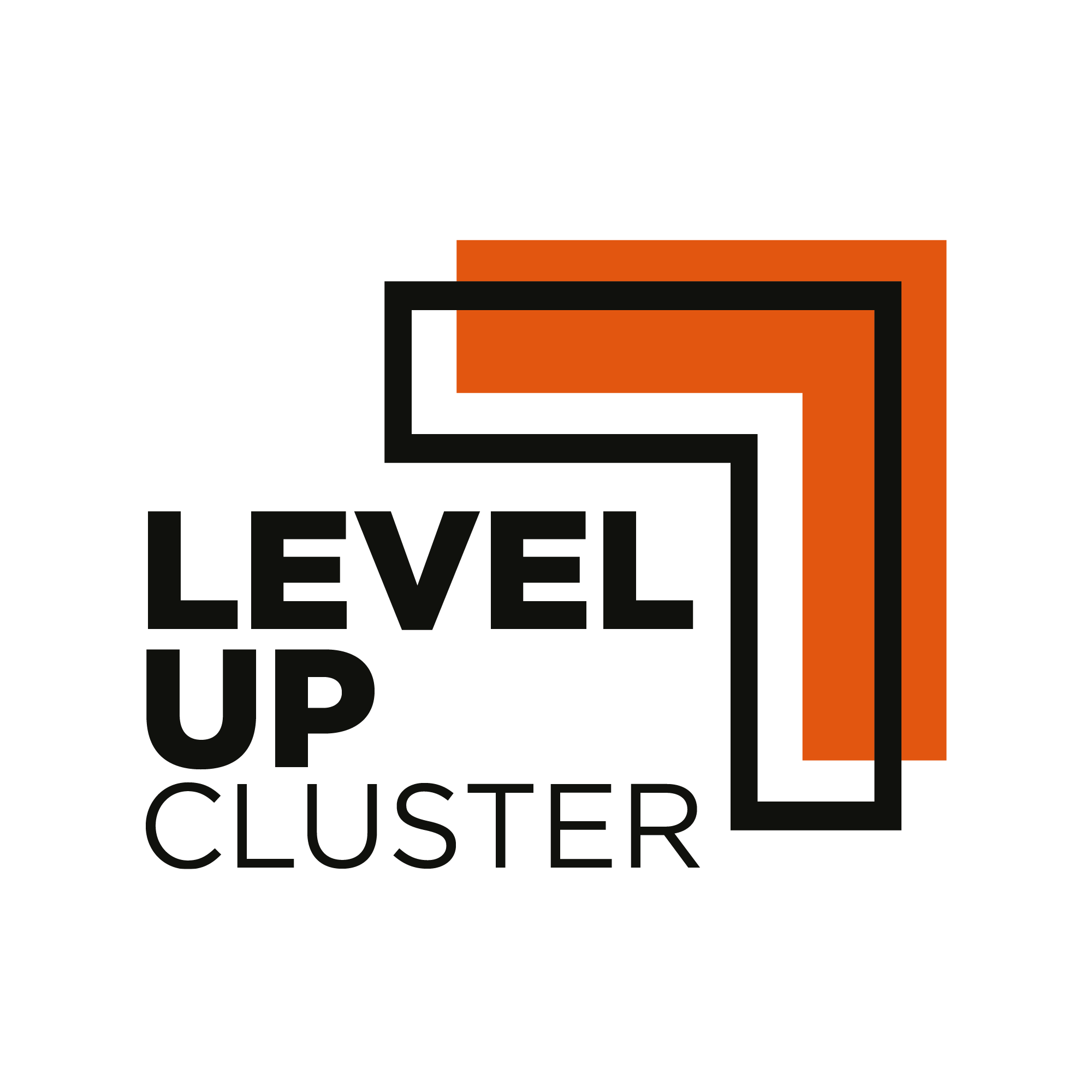 Logo Level Up Cluster